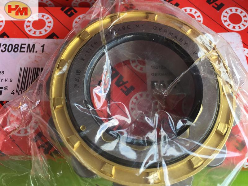 vòng bi bạc đạn fag giá rẻ tại tphcm